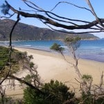 The beach at Tidal River, Wilsons Prom