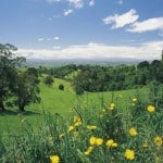 South Gippsland in spring